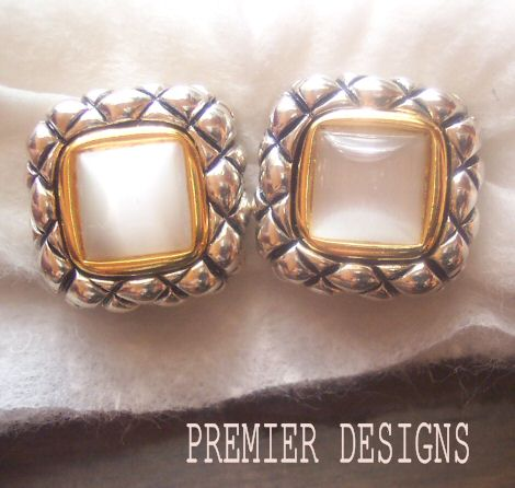 Premier Designs Two Tone Moonstone Earrings