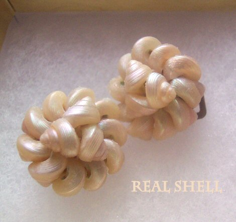 Italy Iridescent Real Shell Earrings